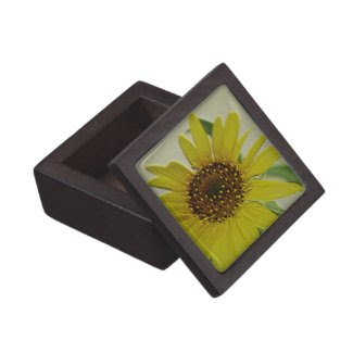 Embossed Sunflower Premium Gift Box