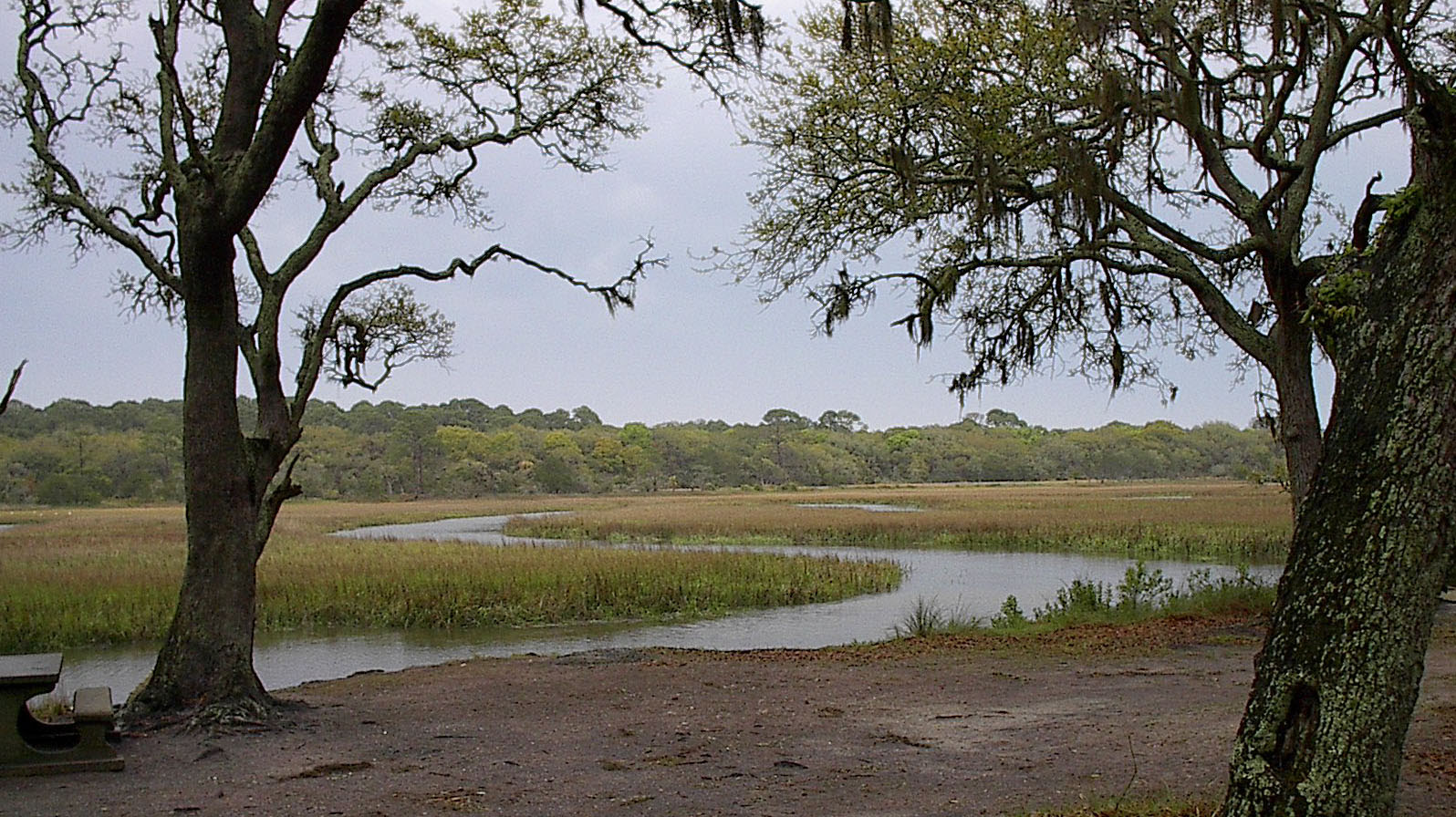 http://upload.wikimedia.org/wikipedia/commons/d/df/JekyllIslandMarsh.jpg