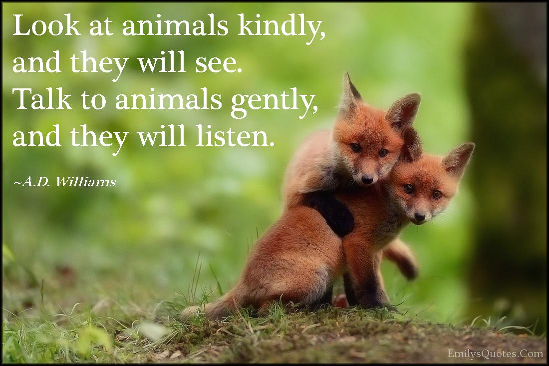 Animals Popular Inspirational Quotes At Emilysquotes
