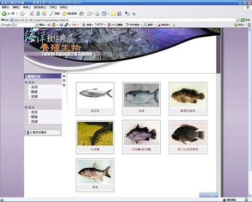 20080307_ODAP-IE6