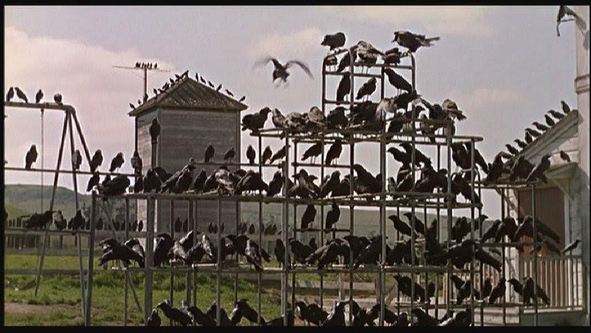 Afbeeldingsresultaat voor birds hitchcock
