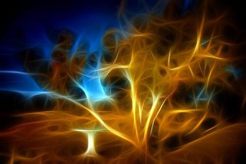 Edge of Reality Tree
