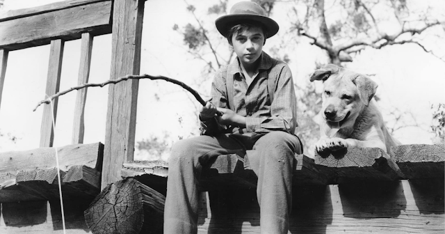 Old Yeller's Tommy Kirk Passes Away After Complicated Acting Career