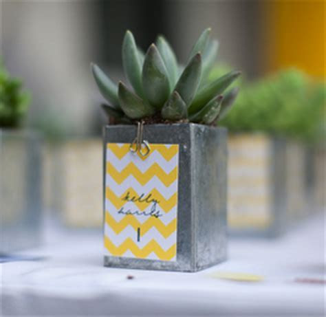 DIY Succulent Wedding Favors   Wedding Ideas, Wedding