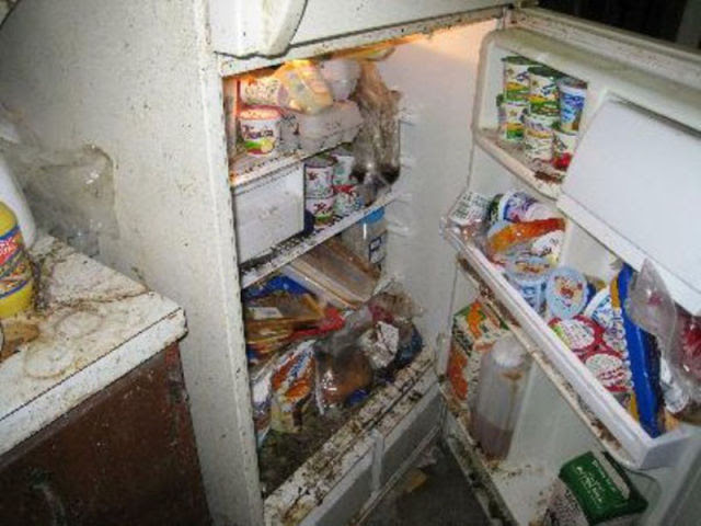 The Filthiest and Most Disgusting Kitchen
