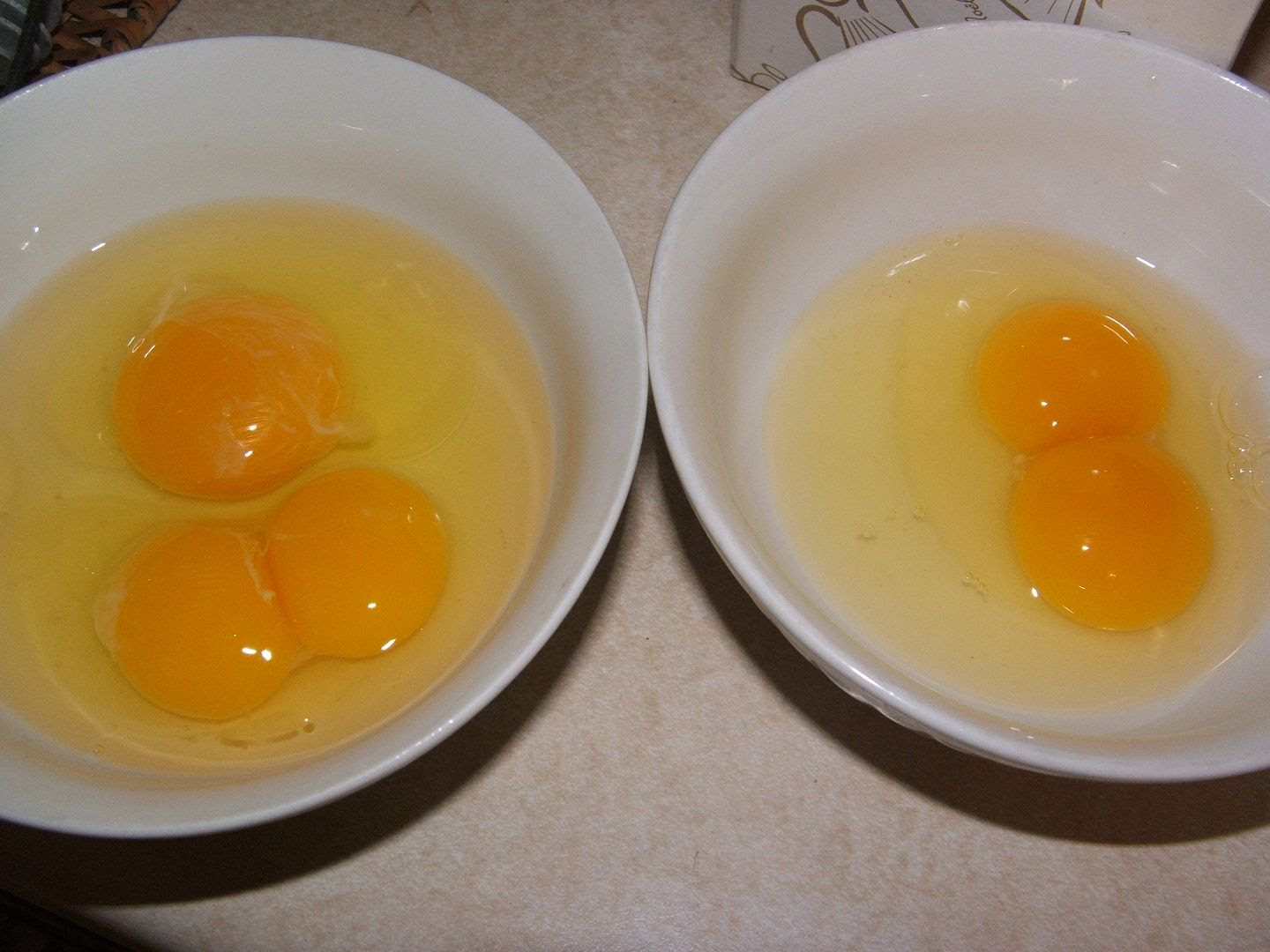 Double Yolks by Angie Ouellette-Tower for godsgrowinggarden.com photo 003_zps2177a16f.jpg