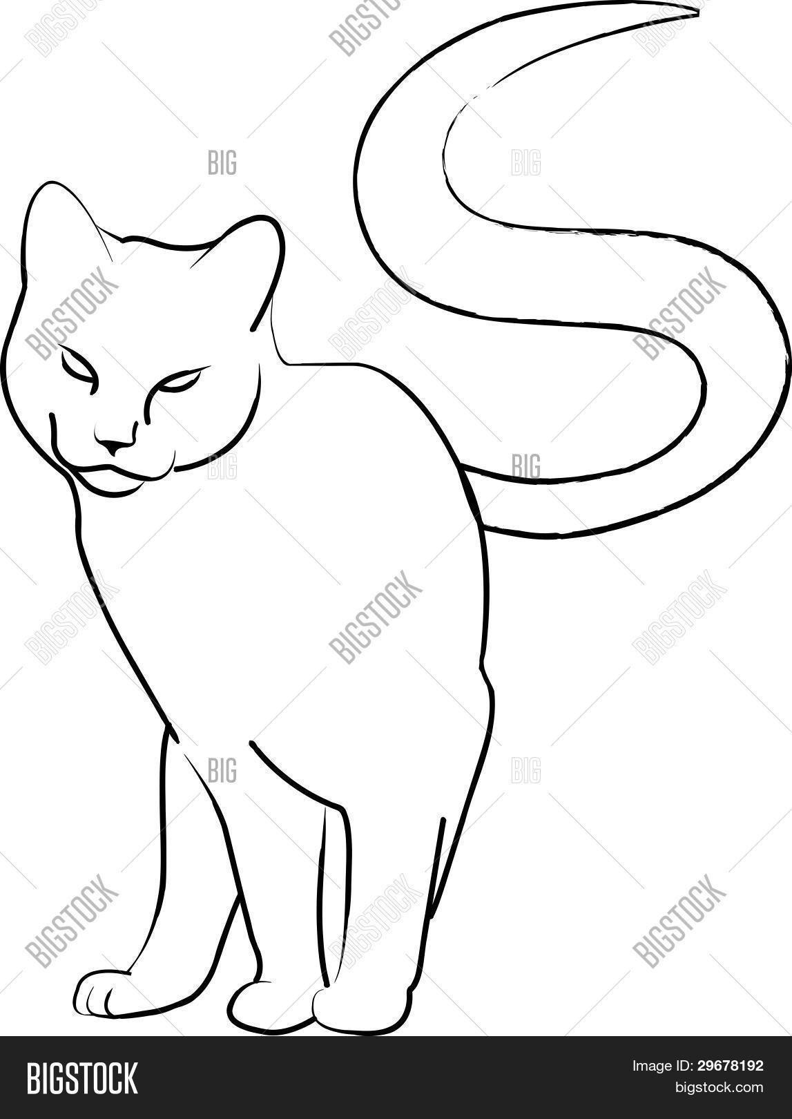 schön rosina wachtmeister katzen malvorlagen  top