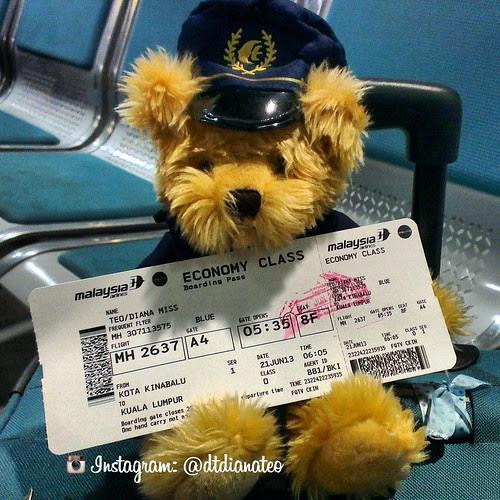 MAS Teddy Bear & Air Ticket