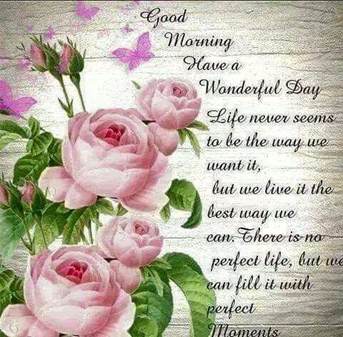 Good Morning Hope You Have A Wonderful Day Full Of Wonderful Moments