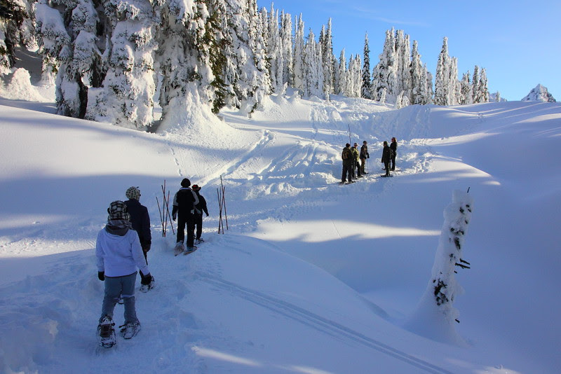 IMG_0508 Ranger-Led Snowshoe Walk
