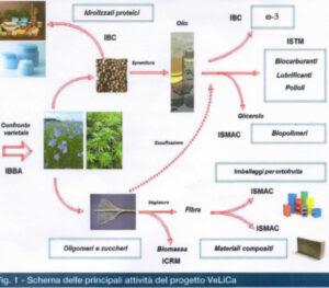 Bioraffineria progetto VeLiCa