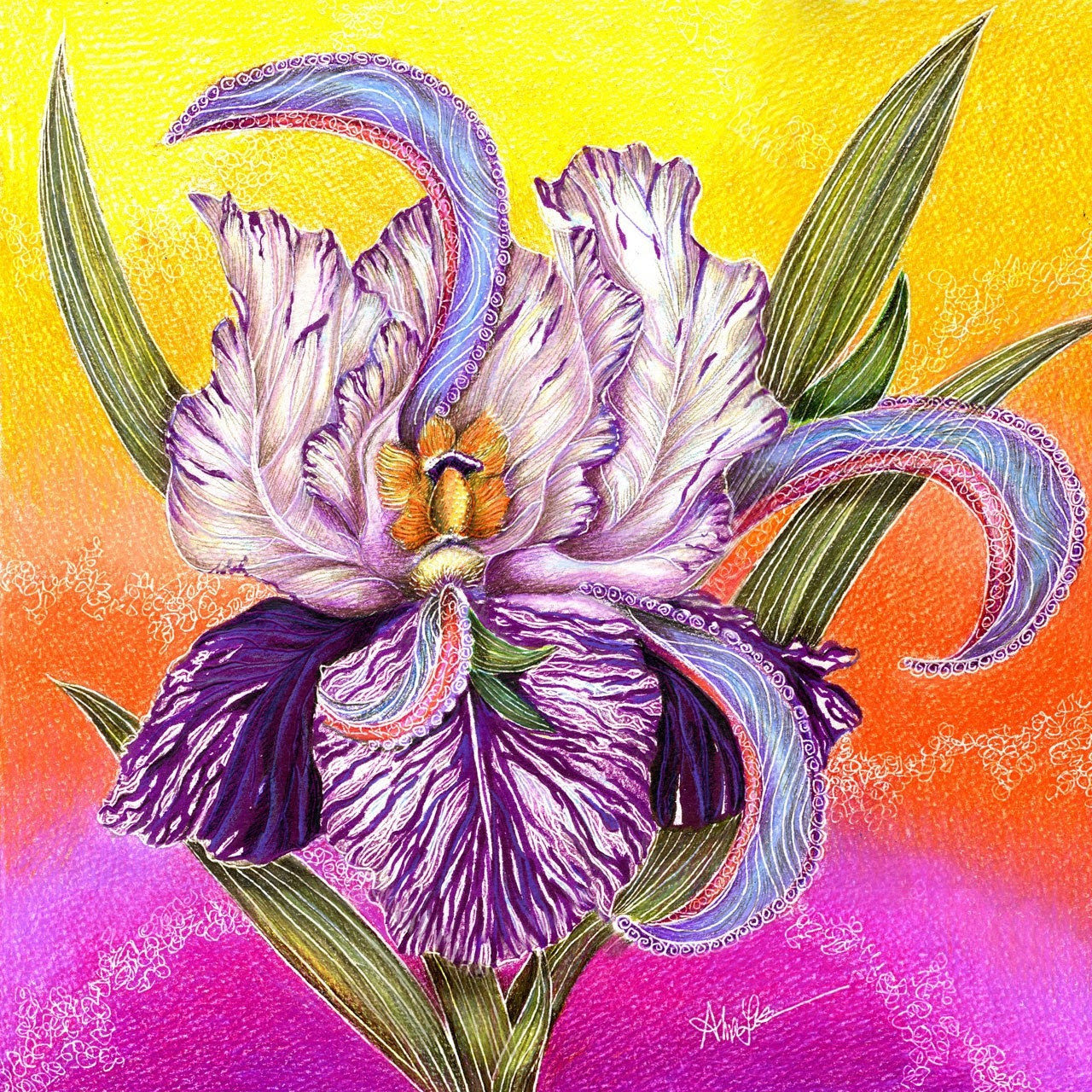 The Paisley Iris, by Alma Lee, Team EBSQ