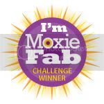 Moxie Fab World Challenge Winner