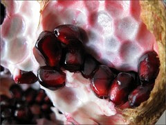 Another view inside a pomegranate