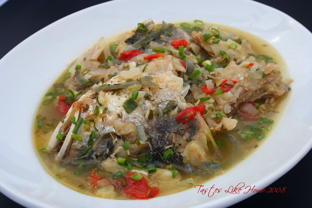 Fish Broth