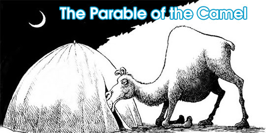 The Parable of the Camel