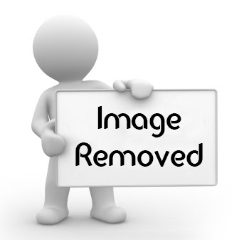 Gertrudis Graphics GMX-PhotoPainter