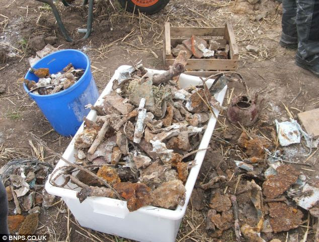 Pieces of history: The team sorted the fragments they found into boxes at the site