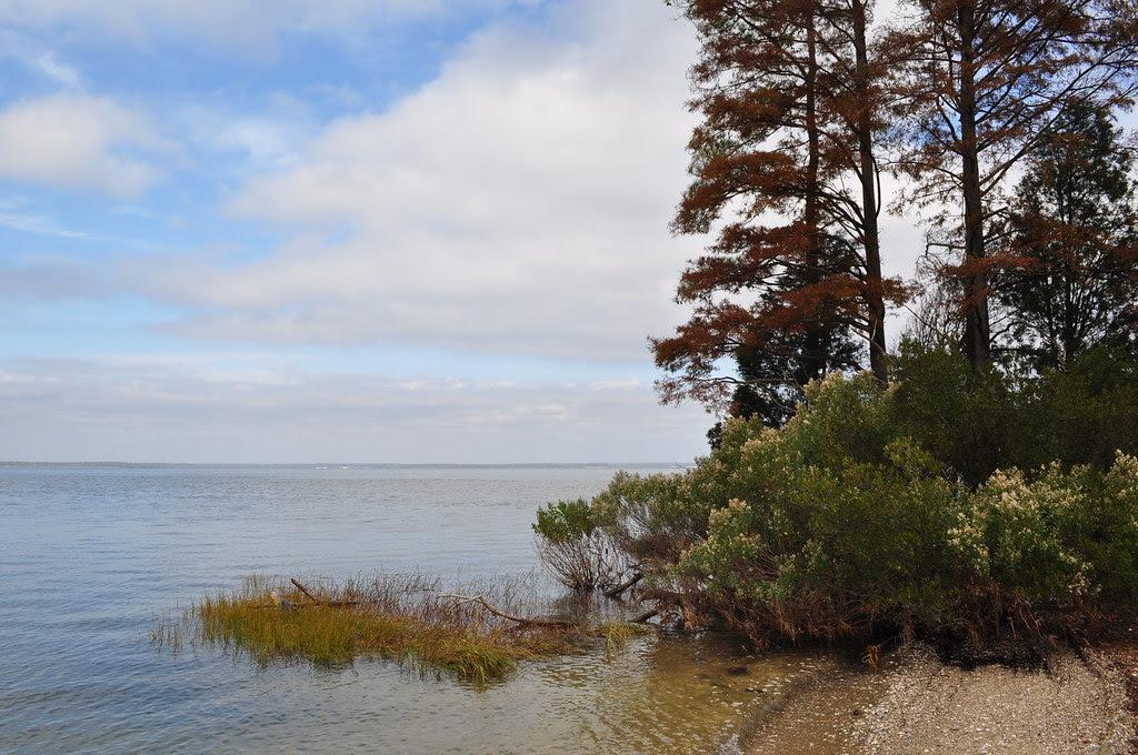 James River Beach 6