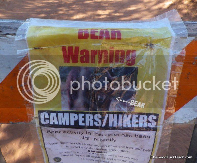 Bear warning, http://thegoodluckduck.com