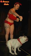 dogshowbynormanblake 013