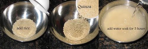 quinoa dosa
