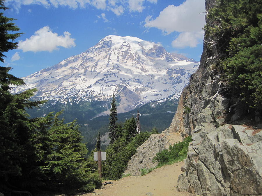 http://images.fineartamerica.com/images-medium-large/mount-rainier-from-the-pinnacle-peak-trail-karen-molenaar-terrell.jpg