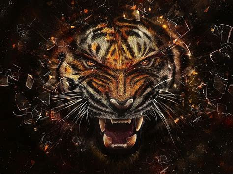 tiger  glass breaking effect hd   abstract