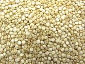 nutrition of quinoa seeds