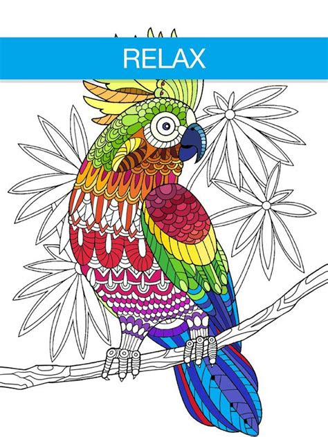 adult coloring book app animals apk