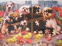 Olivia's Puzzle