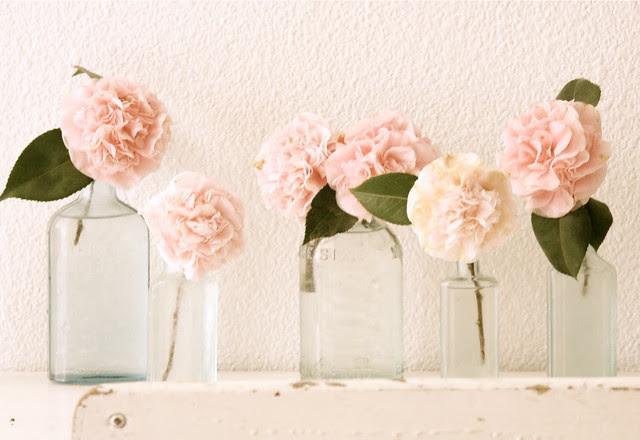 flowersbottles.dreamywhites