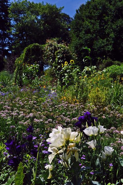 Cut Flower and Vegetable Garden