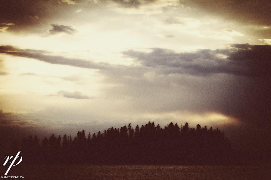 ~ Elk Island ~
