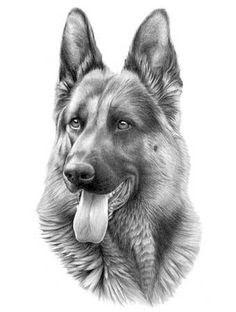 German Shepherd Tattoo Black And White