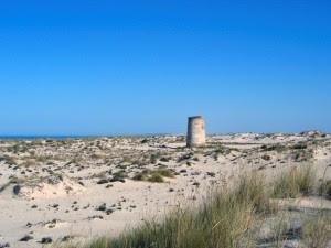 Torre Carbonera. / Foto: IAPH.