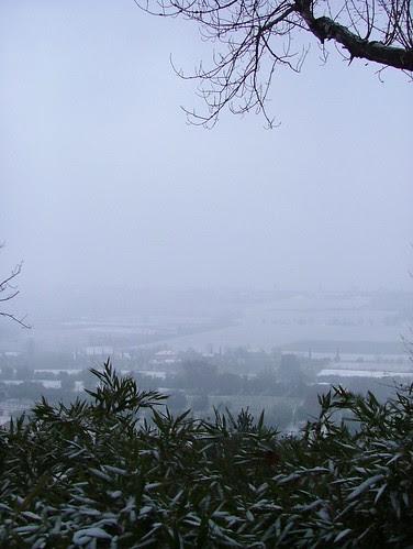 stamattina 19 dicembre 2009