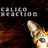 Calico Reaction: Blitz