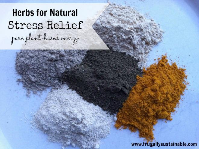 Herbs For Stress Relief + Stress Relief Smoothie Recipe