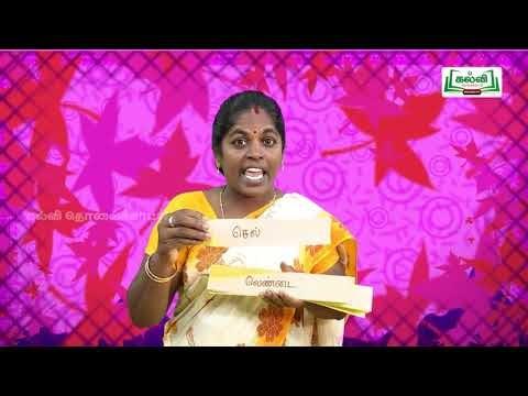 3rd Tamil Bridge Course ஒகார, ஓகார, ஐகார, ஒளகார எழுத்துகள் நாள் 5, 6 Kalvi TV
