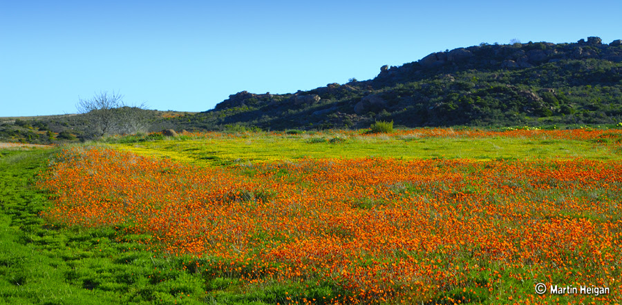 Namaqualand África
