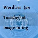 Wordless Wed on Tue w/Sue