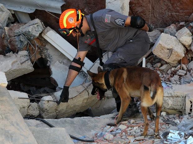 As equipes dos bombeiros usam cães para tentar encontrar uma mulher que estaria sob os escombros da igreja (Foto: Werther Santana/Estadão Conteúdo)