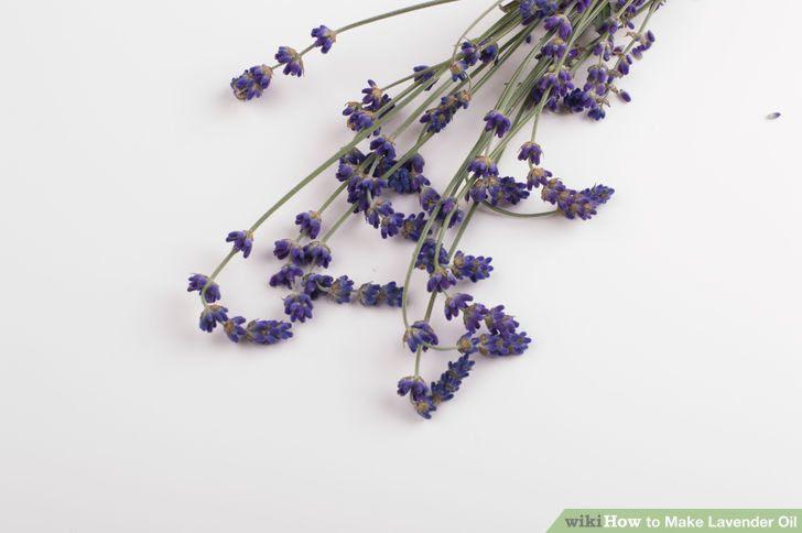 Make Lavender Oil Step 2 Version 3.jpg
