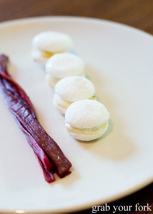 Candied rhubarb and why macarons at Sixpenny Stanmore