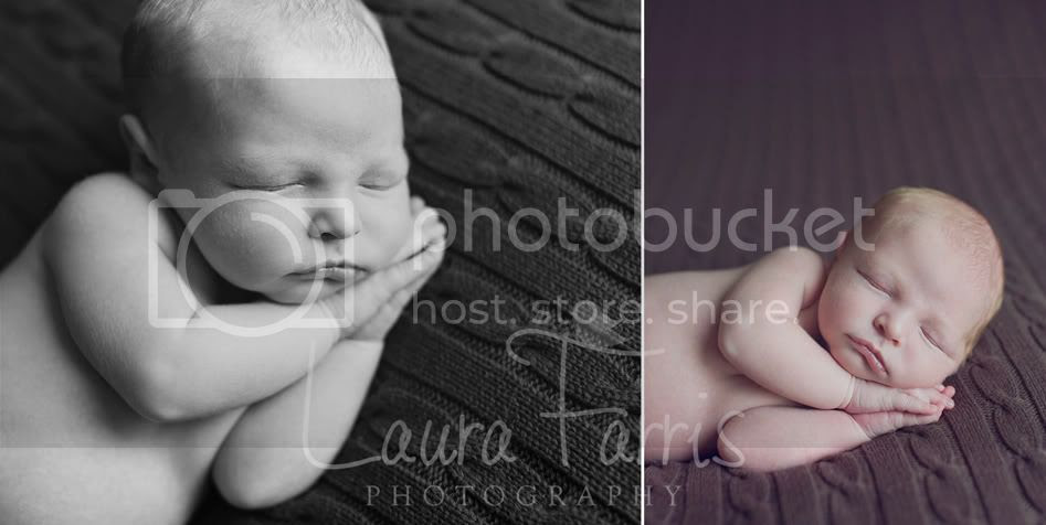 Boise newborn photographers