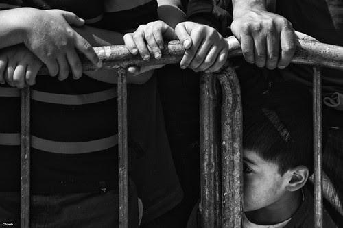 Viendo entre los fierros by Alejandro Bonilla
