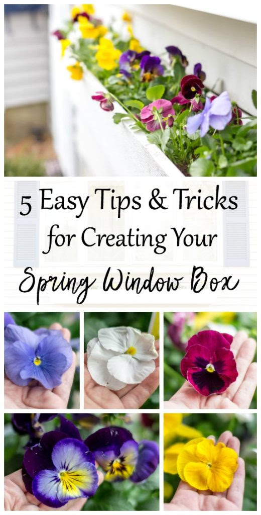 http://www.angiethefreckledrose.com/spring-window-box