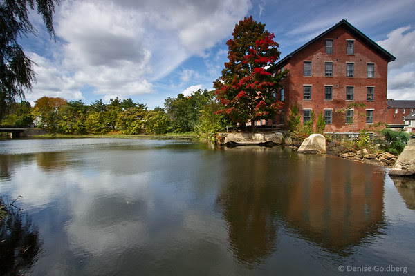 red tree by an old mill building