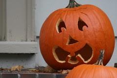 pumpkin 085